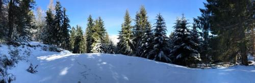L'établissement Domaine de Lespinet en hiver
