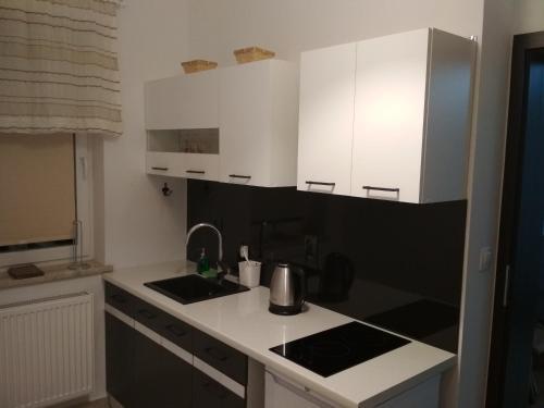Kuchnia lub aneks kuchenny w obiekcie Apartament Scorpion Modlin