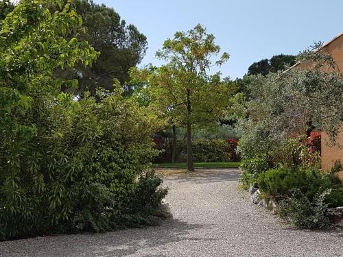 A garden outside Y'a Pas de Lézard