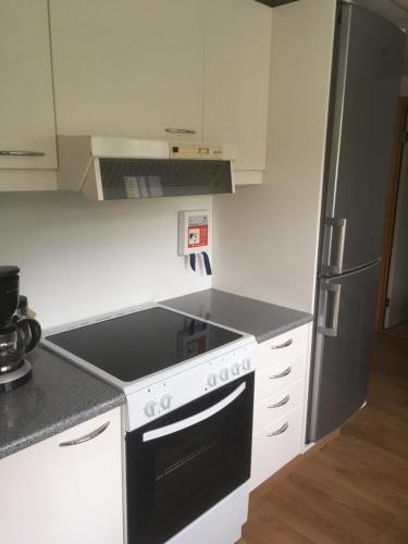 A kitchen or kitchenette at Apartment Erna