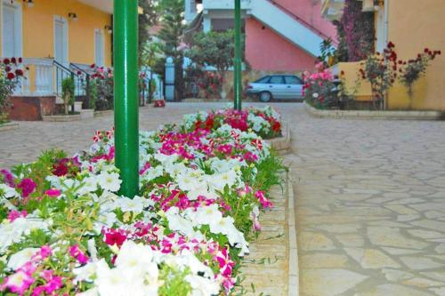 A garden outside Lemon Grove Hotels And Studios