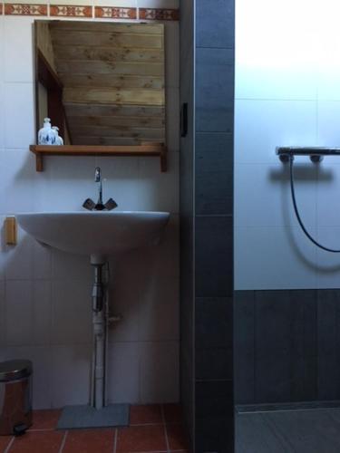A bathroom at wandel en fiets top locatie midden in de bossen