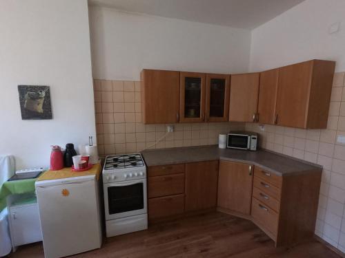 Kuchyň nebo kuchyňský kout v ubytování Apartmany Dvory