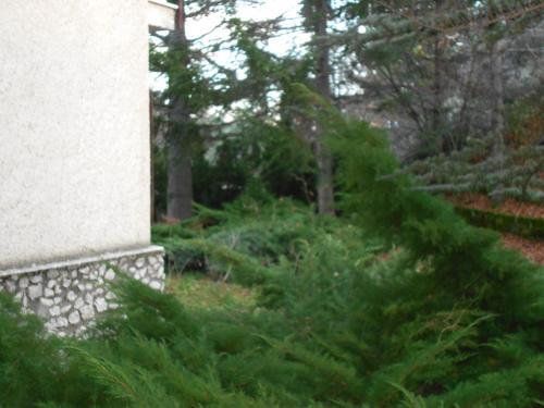 Giardino di Appartamento Roccione