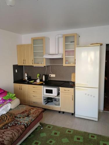 Кухня или мини-кухня в Appartamenty studiia na Kuryzhova 30