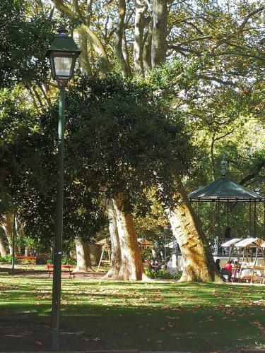A garden outside Hostel Margô