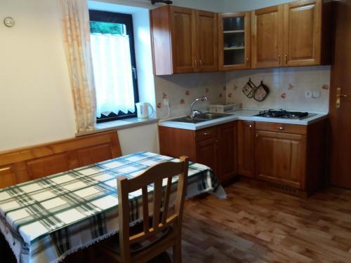 Kuhinja oz. manjša kuhinja v nastanitvi Apartment Milan