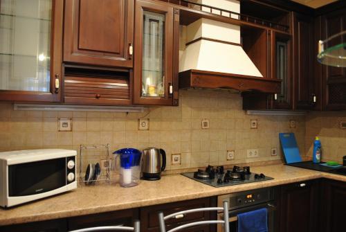Кухня или мини-кухня в 2-kh komnatnaia kvartira-studiia v samom tsientrie ghoroda.