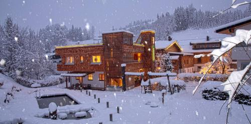 Appartementhaus Trixl during the winter