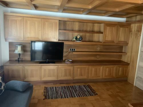 A television and/or entertainment center at Musi Appartements