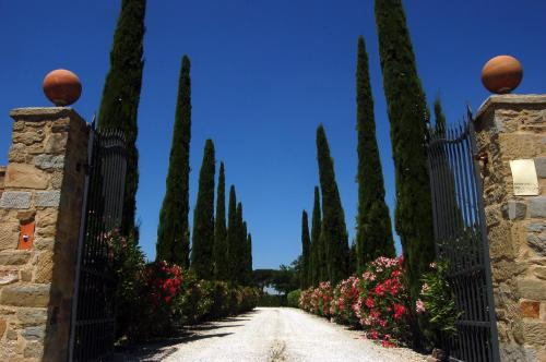 Casa Vacanze Burcinella