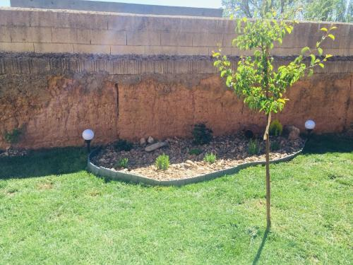 A garden outside La Casona de Coquina