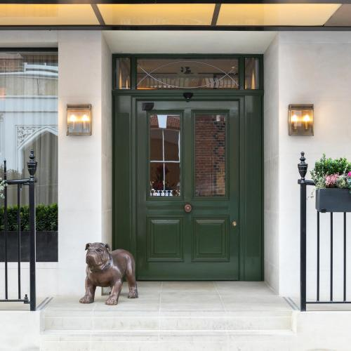 Pet or pets staying with guests at Holmes Hotel London