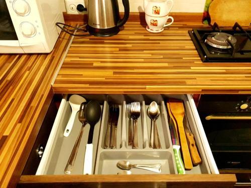 Кухня или мини-кухня в Apartment Ushakova 16