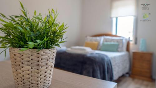 A bed or beds in a room at Apartamento Central PVZ