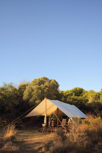 hotel quatermain s 1920 s safari camp amakhala game reserve south rh booking com