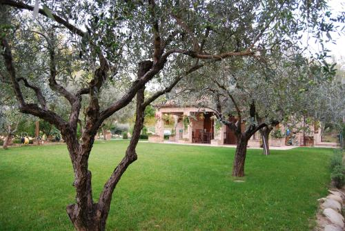 Bed and Breakfast La casa delle rondini
