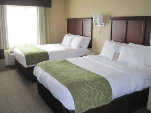 Comfort Suites - Columbia