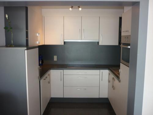 Een keuken of kitchenette bij Apartment Orion 14