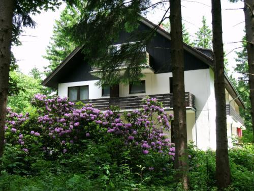Haus Hirschmann