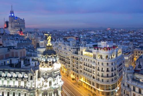 The Principal Madrid