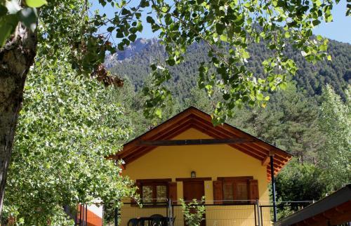 Camping Pineta