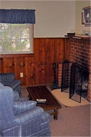 less cool for bear owl cabin cabins big rentals