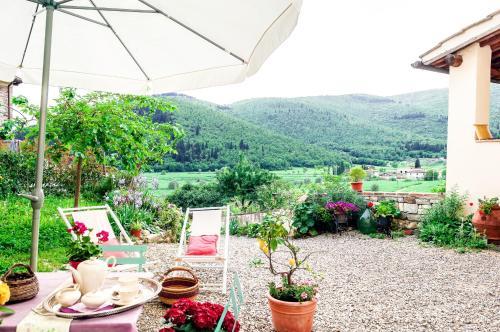 Casa Toscana Organic Lifestyle