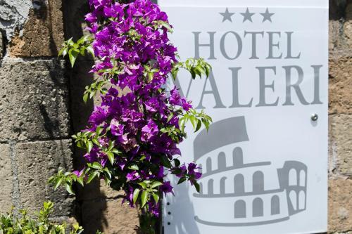 Hotel Valeri