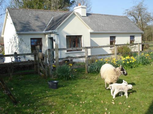 Hawthorn Farm Cottage