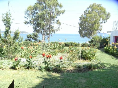 Nefi Guesthouse (Adults Only)