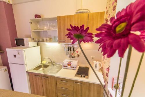 Apartment Studio Santel