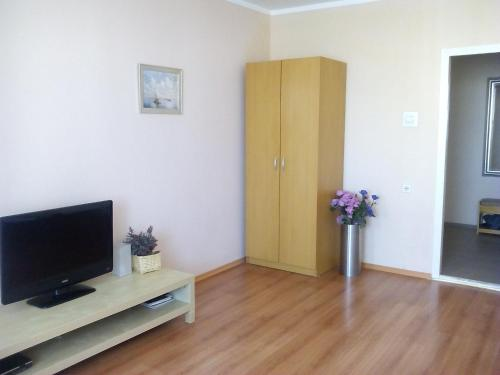 A television and/or entertainment center at Apartment Allinrent Voykovskaya