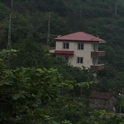 Zazana Mountain House