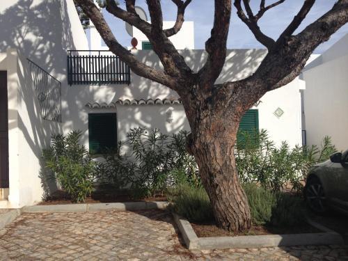 Cosy Villa
