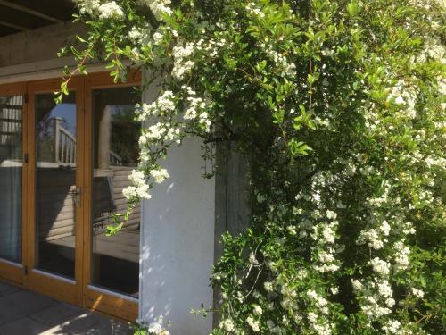 Swallows Rest Garden Apartment