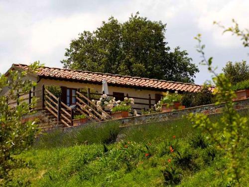 Holiday home Mammolo Ciliegiolo