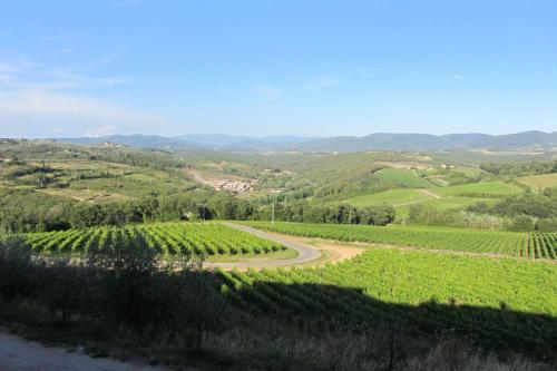 Winery Houses in Chianti