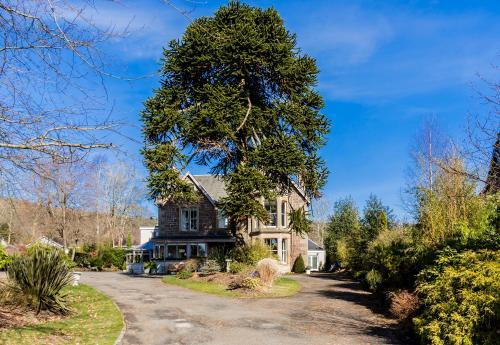 Abbotsford Lodge