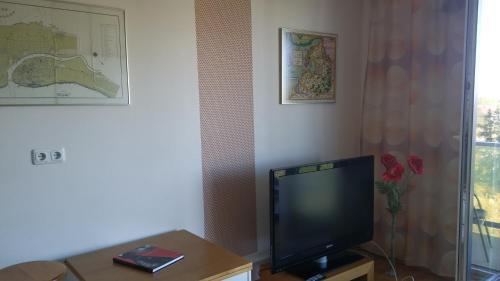 Televiisor ja/või meelelahutuskeskus majutusasutuses Monika Apartment