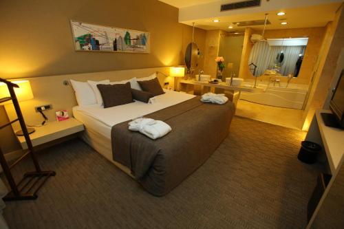 安卡拉皇冠假日酒店