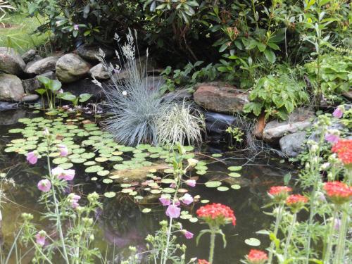 Gartenwohnung Gretl mit Biotop in Seenähe