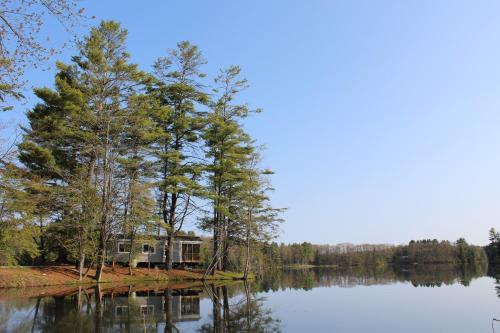 Alpine Lake Lakefront Park Model 4