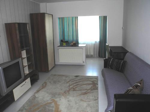 Apartament David