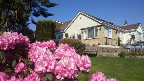 Churston Way Lodge Guest House