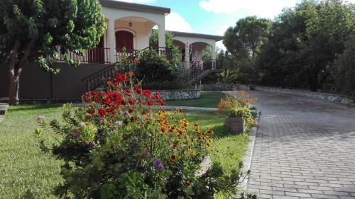 A garden outside Angela Studios