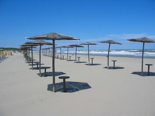 Locazione turistica Borsetti.5