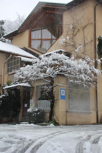 Lugano Savosa Winter Youth Hostel
