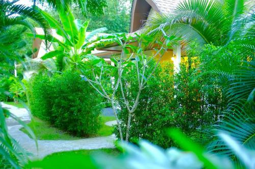 A garden outside The Nature House Aonang Krabi Thailand