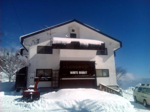 White Rabbit Madarao during the winter